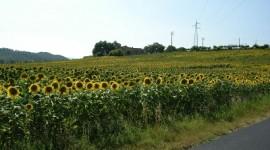 In Lombardia si lavora a una nuova forma di metano