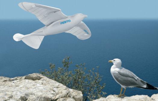 Smartbird, il gabbiano robot che svela i segreti dell'efficienza energetica