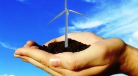Global Wind Day, giornata mondiale dell'energia eolica