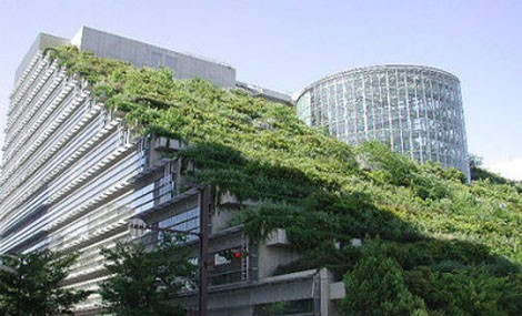 """Un giardino """"per aria"""" rende più bella la città"""