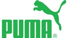 Greenpeace chiama…e Puma risponde!