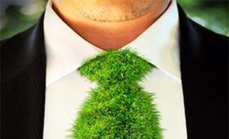 Vuoi un futuro nella Green Economy?