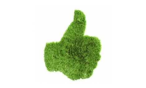 Le offerte di lavoro si tingono sempre più di verde