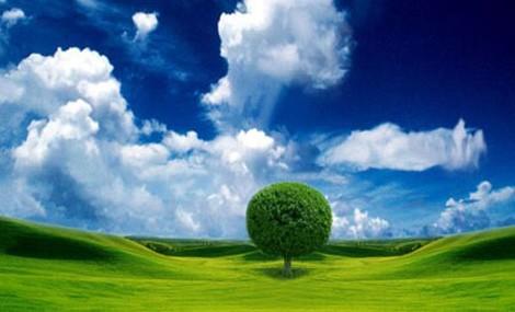 Agroenergie, in che direzione stiamo andando?