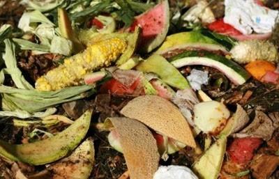 Eco-rivoluzione in Gran Bretagna, meno sprechi entro il 2015!