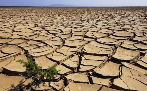 Mezzo miliardo di danni a causa della siccità