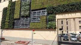 Anche Firenze ospita il suo…giardino verticale!