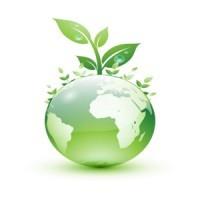 Green, sempre più offerte di lavoro per profili molto qualificati.