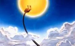 Campionato Solare 2012, chi vince la gara dell'energia pulita?