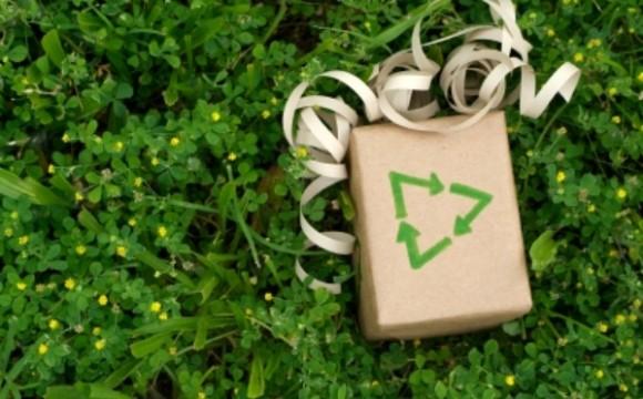 Ecco come rendere green il Natale! -parte 1-