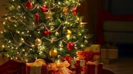 Natale green, il regalo giusto rispetta l'ambiente
