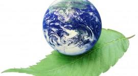 Green Love Summer Festival: parole d'ordine musica ed ecologia