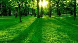 La green economy salverà il prossimo governo?