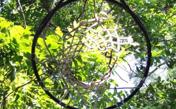 La Basket Serapo Gaeta fa canestro alleandosi con Impronte Verdi