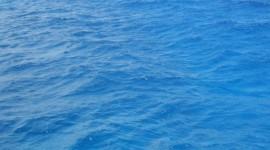 """""""Salviamo le coste italiane"""", l'iniziativa di Legambiente per tutelare i nostri mari"""