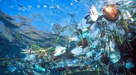 Legambiente: incentivi e disincentivi per ridurre i troppi rifiuti