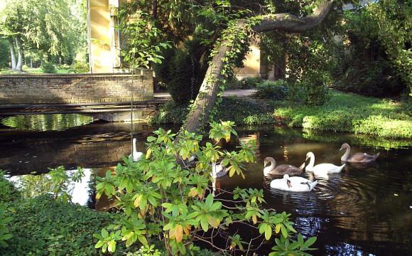"""Secondo concorso """"Giardini creativi"""" di Orticolario"""