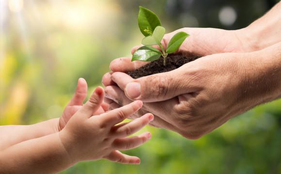 «Occorre preservare il suolo: non è una risorsa infinita» (WiGreen)