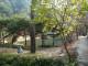 WWF denuncia il rischio paralisi per i parchi nazionali italiani