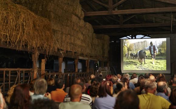 MoFFe 2014 – Monnezza Film Festival