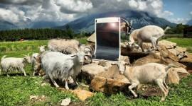 Il rivoluzionario pannello fotovoltaico CIGS Prometea