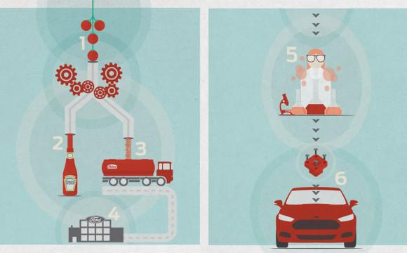 Bioplastiche dai pomodori: Ford e Heinz insieme per lo sviluppo di materiali sostenibili