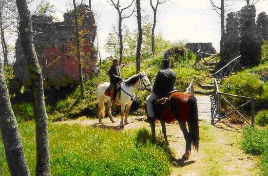Una passeggiata a cavallo nei boschi con Emozione3