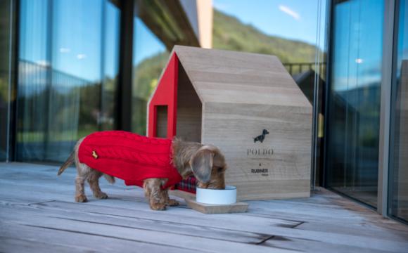 RUBNER HAUS & POLDO DOG COUTURE: UNA NUOVA COLLABORAZIONE 100% MADE IN ITALY PER DARE CASA AGLI AMICI A 4 ZAMPE