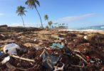Inquinamento della plastica: anche Nestlé adotta soluzioni green