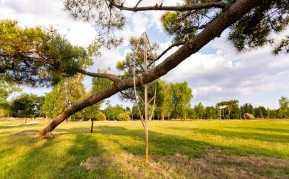 """Isola di Albarella ospita """"Evoluzioni"""", mostra open-air di Officinadïdue ispirata ai cambiamenti climatici"""