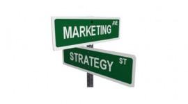 Università e green marketing: quando anche il Master è eco
