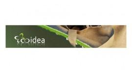 Rendi i tuoi pensieri green con speciali eco-idee!