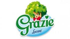 A Lucca c'è un nuovo impianto fotovoltaico targato Lucart