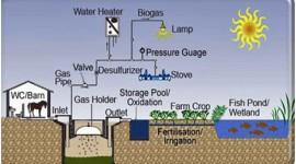 Agroenergie e cogenerazione, incontro di approfondimento a Bari