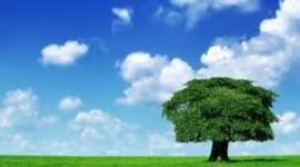 Nuove tecnologie al servizio dell'ambiente: oggi a Roma il seminario
