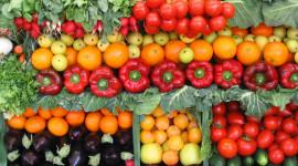 Al Forum della Sostenibilità Ambientale arriva il pranzo sostenibile