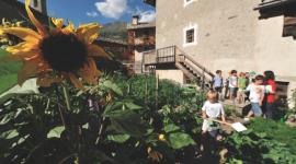 In Valle D'Aosta l'estate è green con Fototrekking Giroparchi