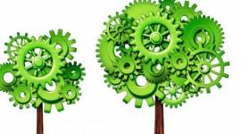 Alto Adige cerca profili specializzati in ingegneria, informatica, green e r&s