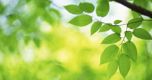 La riqualificazione edilizia per il benessere dei cittadini e dell'ambiente