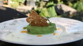 A Taste of Milano l'alta cucina diventa sostenibile