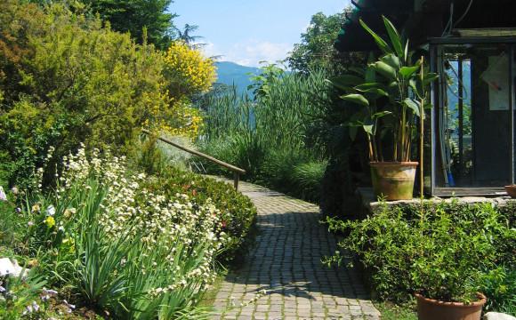 A Bergamo si insegna a coltivare l'orto come strumento di inclusione scolastica
